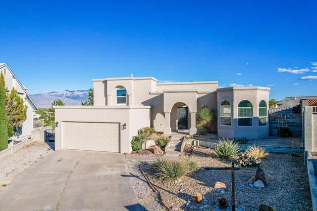 10216 Silver Grade Court NW, Albuquerque, NM 87114 (MLS #1002996) :: Sandi Pressley Team
