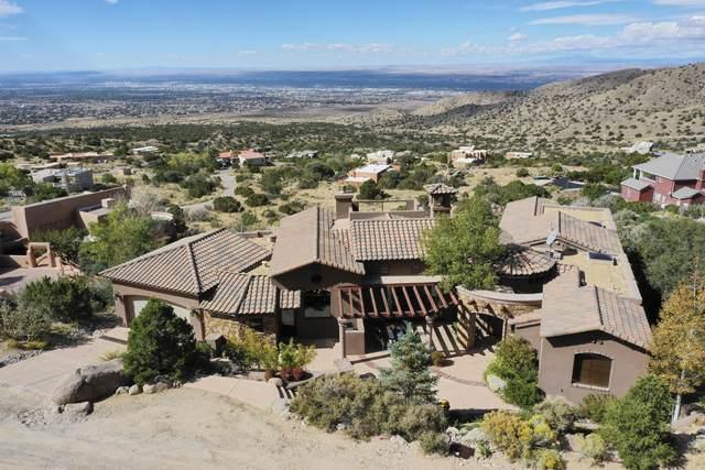 1113 La Luz Trail NE, Albuquerque, NM 87122 (MLS #1003021) :: Campbell & Campbell Real Estate Services