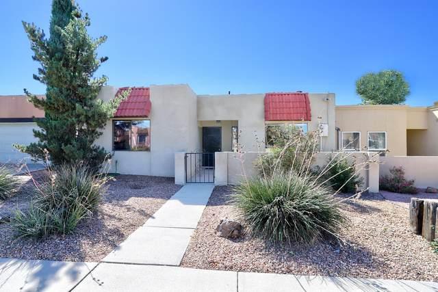 8706 Chambers Place NE, Albuquerque, NM 87111 (MLS #1003046) :: Sandi Pressley Team