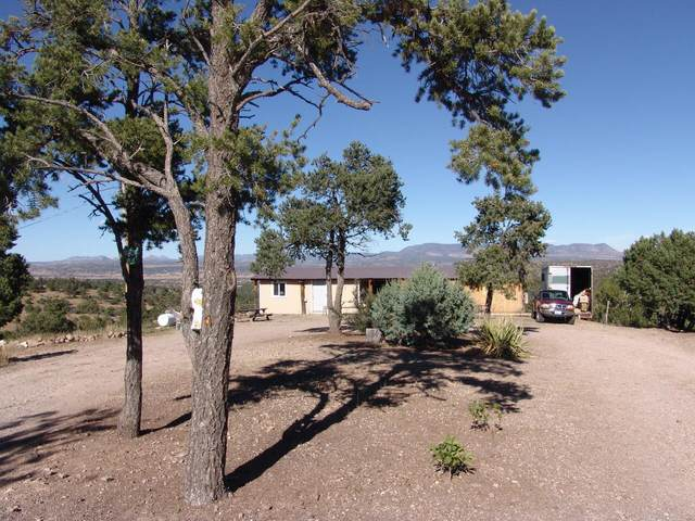 36 Wilderness Way Road, Datil, NM 87821 (MLS #1003077) :: Campbell & Campbell Real Estate Services