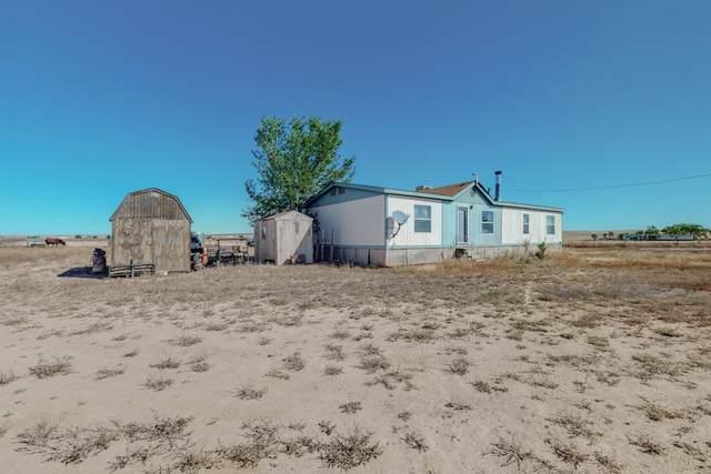 16 E Placitas Drive, Moriarty, NM 87035 (MLS #1003086) :: Sandi Pressley Team