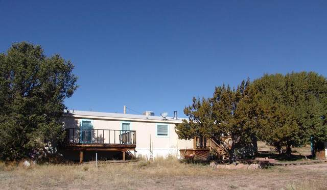 16 Farmer Way, Datil, NM 87821 (MLS #1003093) :: Campbell & Campbell Real Estate Services