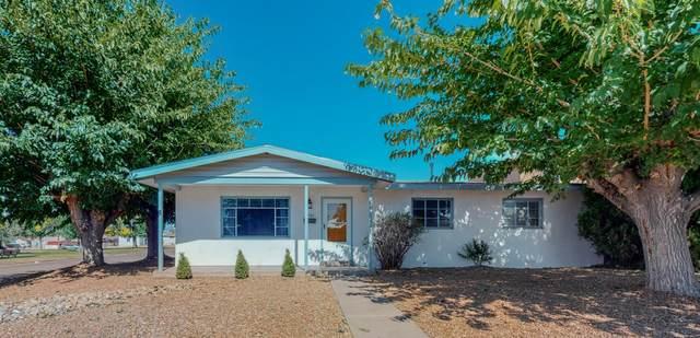 5701 Arvilla Avenue NE, Albuquerque, NM 87110 (MLS #1003100) :: Keller Williams Realty