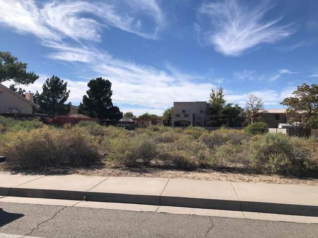 6605 San Ildefonso NW, Albuquerque, NM 87120 (MLS #1003101) :: Keller Williams Realty