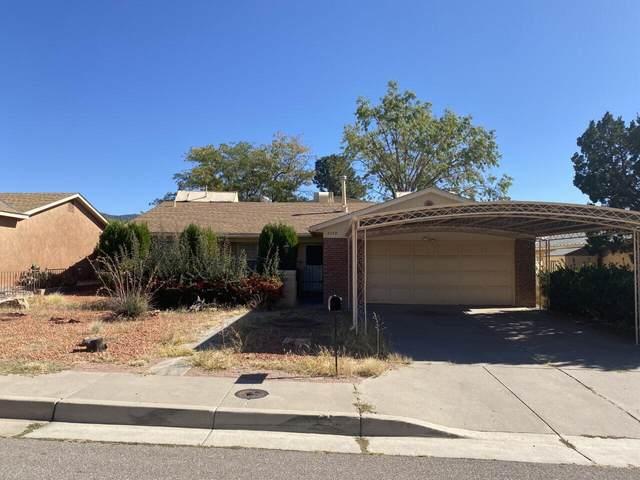 3222 Judy Place NE, Albuquerque, NM 87111 (MLS #1003105) :: The Buchman Group