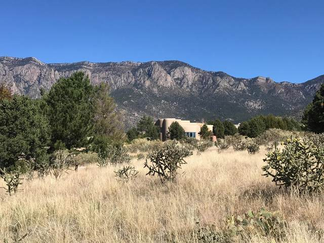 6008 Beargrass Court NE, Albuquerque, NM 87111 (MLS #1003136) :: Keller Williams Realty