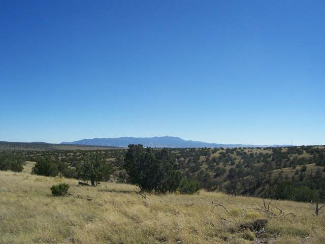 196 Campfire Road, Magdalena, NM 87825 (MLS #1003153) :: Campbell & Campbell Real Estate Services