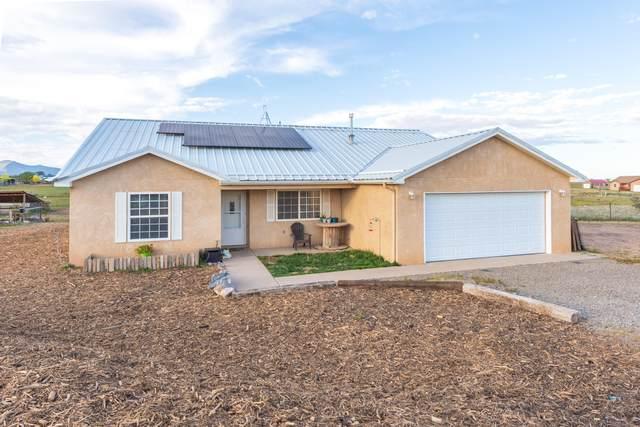 209 E Venus Road, Edgewood, NM 87015 (MLS #1003168) :: The Buchman Group
