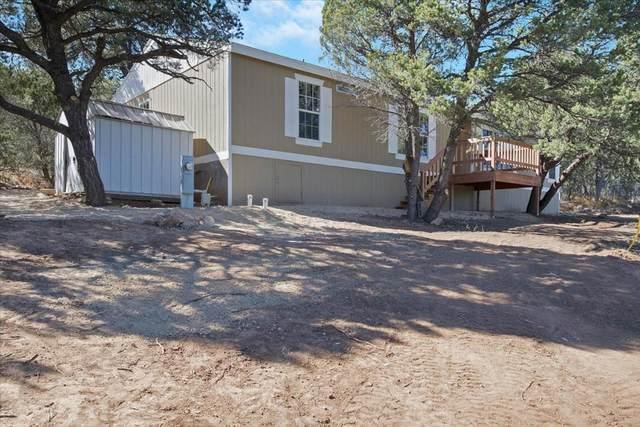 15 William Bonney Road, Edgewood, NM 87015 (MLS #1003174) :: The Buchman Group