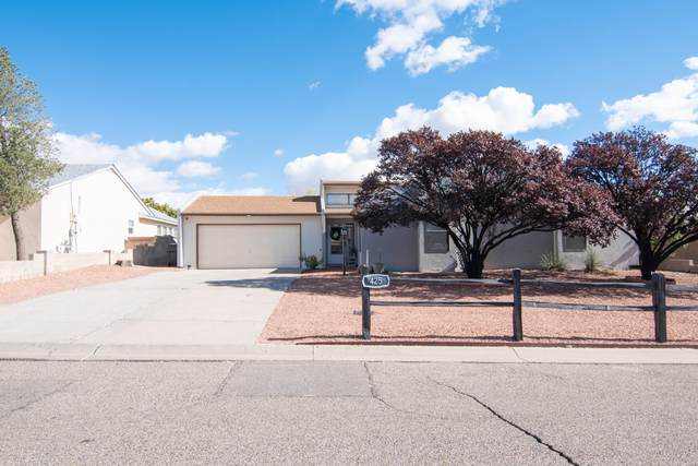 425 Wagon Train Drive SE, Rio Rancho, NM 87124 (MLS #1003191) :: Campbell & Campbell Real Estate Services