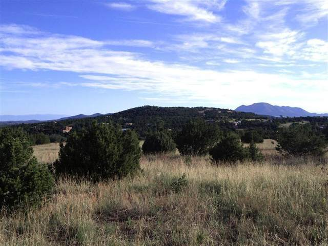 46 Los Pecos Loop, Tijeras, NM 87059 (MLS #1003227) :: Campbell & Campbell Real Estate Services