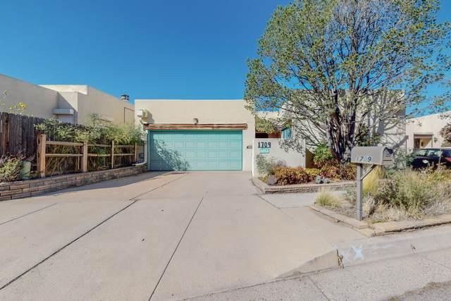 1709 Indian Plaza Drive NE, Albuquerque, NM 87106 (MLS #1003235) :: The Buchman Group