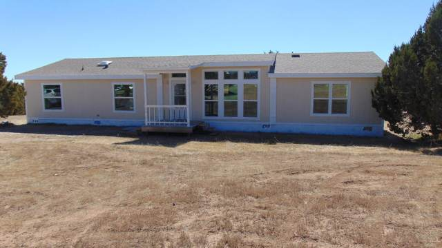 23 Brandy Court, Moriarty, NM 87035 (MLS #1003244) :: Campbell & Campbell Real Estate Services