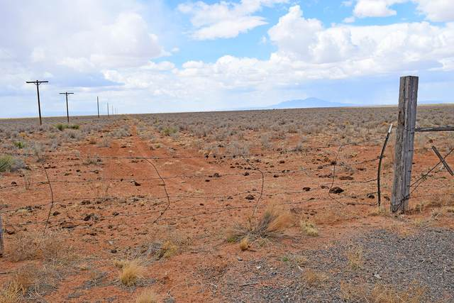 Lot 7 Monjeau Circle, Rio Communities, NM 87002 (MLS #1003252) :: Campbell & Campbell Real Estate Services