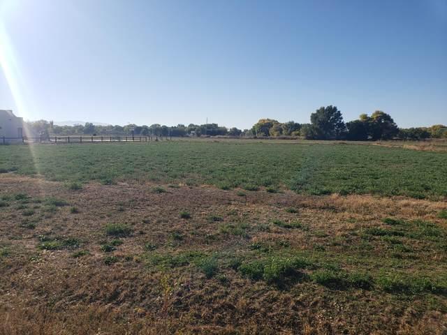 2136 Lucca Avenue SW, Albuquerque, NM 87105 (MLS #1003272) :: Keller Williams Realty