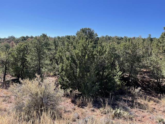 61 Twin Arrow Drive, Sandia Park, NM 87047 (MLS #1003285) :: Campbell & Campbell Real Estate Services