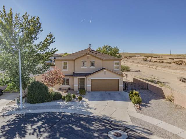 2901 Mckinnon Way SW, Albuquerque, NM 87121 (MLS #1003352) :: The Buchman Group