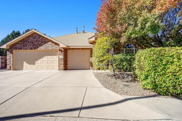 9403 Travilla Drive NW, Albuquerque, NM 87114 (MLS #1003370) :: The Buchman Group