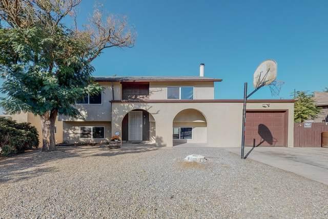 1725 Hiawatha Drive NE, Albuquerque, NM 87112 (MLS #1003383) :: The Buchman Group