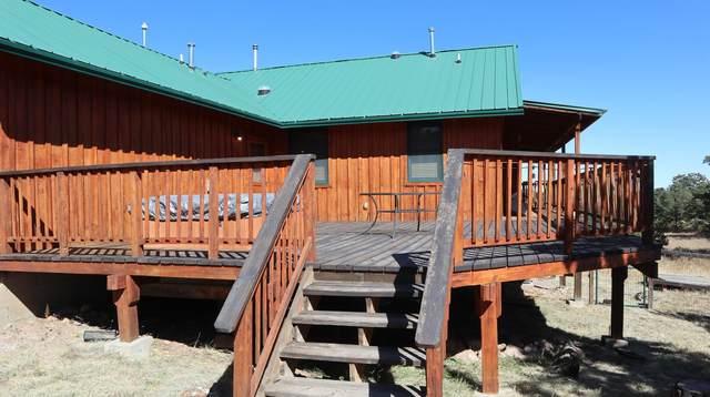 54 Lance Lane, Datil, NM 87821 (MLS #1003400) :: Campbell & Campbell Real Estate Services