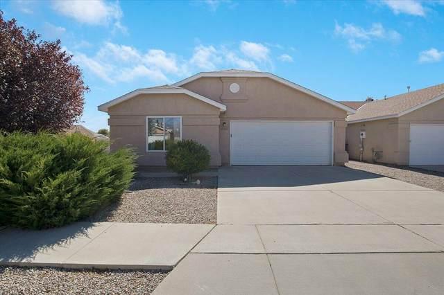 11104 Deer Lodge Place SE, Albuquerque, NM 87123 (MLS #1003404) :: The Buchman Group