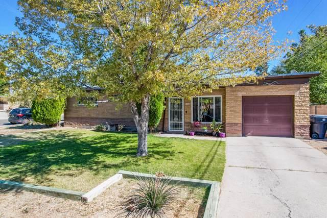 1224 Dorothy Street NE, Albuquerque, NM 87112 (MLS #1003409) :: The Buchman Group