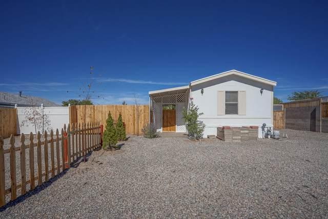 6925 Derickson Avenue NE, Albuquerque, NM 87109 (MLS #1003410) :: The Buchman Group