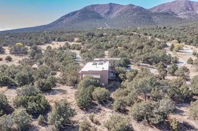 6 Vista Sierra Road, Edgewood, NM 87015 (MLS #1003415) :: The Buchman Group