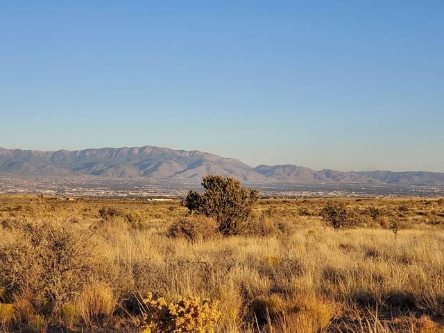 20th Street Sw, Rio Rancho, NM 87124 (MLS #1003438) :: HergGroup Albuquerque