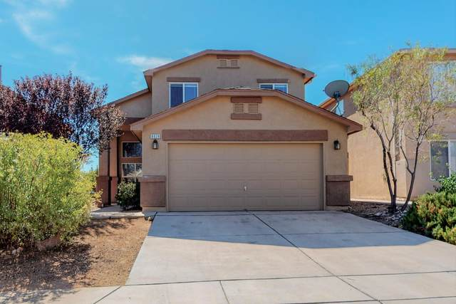 8928 Blue Meadow Trail SW, Albuquerque, NM 87121 (MLS #1003447) :: The Buchman Group