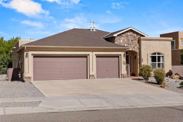 5039 Brown Bear Drive NE, Rio Rancho, NM 87144 (MLS #1003455) :: The Buchman Group