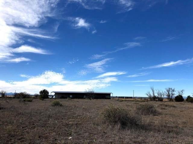 Colletti Drive (B), Moriarty, NM 87035 (MLS #1003473) :: Sandi Pressley Team