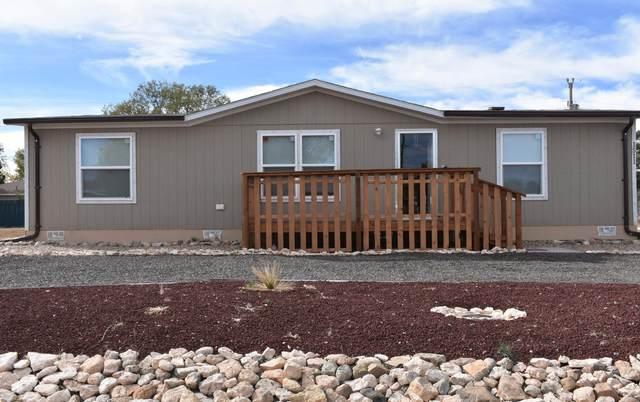 1511 Elsie Street, Moriarty, NM 87035 (MLS #1003496) :: Sandi Pressley Team