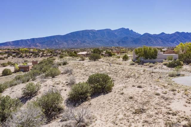 Ocate Court, Placitas, NM 87043 (MLS #1003506) :: Berkshire Hathaway HomeServices Santa Fe Real Estate