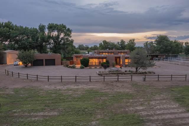 59 Hob Road, Los Lunas, NM 87031 (MLS #1003509) :: The Shear Team