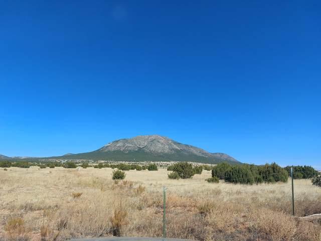 Weathersby Drive, Edgewood, NM 87015 (MLS #1003535) :: The Buchman Group