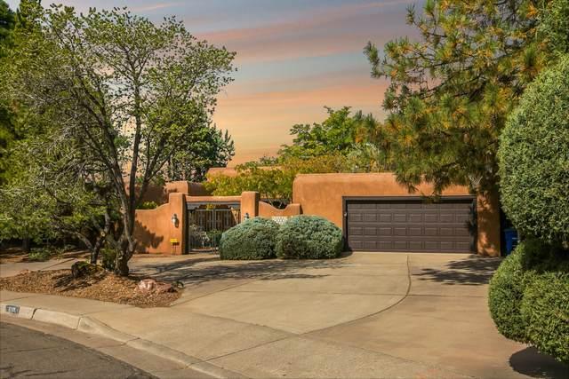 8705 La Sala Del Centro NE, Albuquerque, NM 87111 (MLS #1003583) :: The Buchman Group