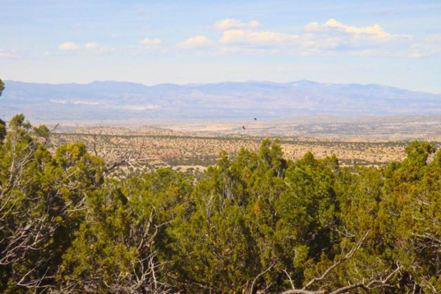 20 La Cantera, Sandia Park, NM 87047 (MLS #862907) :: Campbell & Campbell Real Estate Services