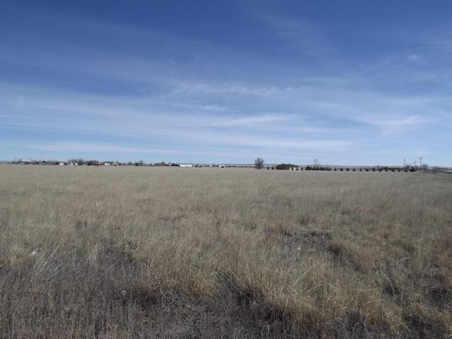 Salt Mission Trail, McIntosh, NM 87032 (MLS #863095) :: Campbell & Campbell Real Estate Services