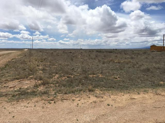 Chula Vista, McIntosh, NM 87032 (MLS #864117) :: Campbell & Campbell Real Estate Services