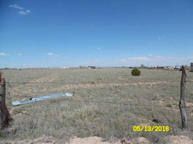 Terry Lane, McIntosh, NM 87032 (MLS #866089) :: Campbell & Campbell Real Estate Services