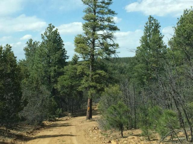 15 Connie Drive, Tijeras, NM 87059 (MLS #866302) :: Will Beecher at Keller Williams Realty
