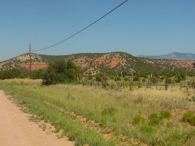 Red Bluff Rd., Mountainair, NM 87036 (MLS #869255) :: Campbell & Campbell Real Estate Services