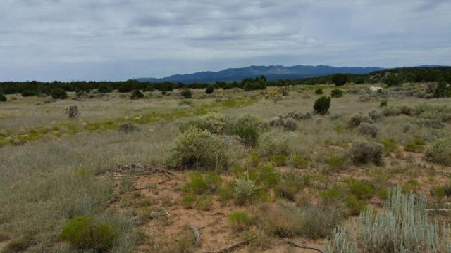 252 Keres, Mountainair, NM 87036 (MLS #869762) :: Campbell & Campbell Real Estate Services