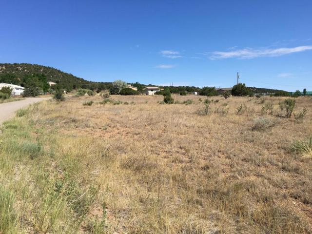 Stonebrook Lane, Tijeras, NM 87059 (MLS #872491) :: Campbell & Campbell Real Estate Services
