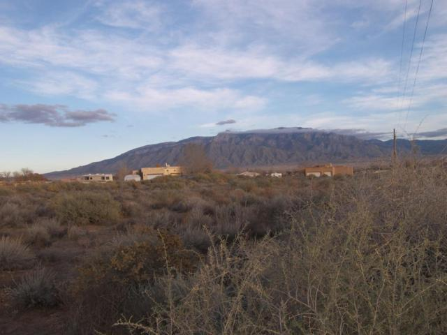 Perfecto Lopez, Lot E, Corrales, NM 87048 (MLS #884546) :: Campbell & Campbell Real Estate Services