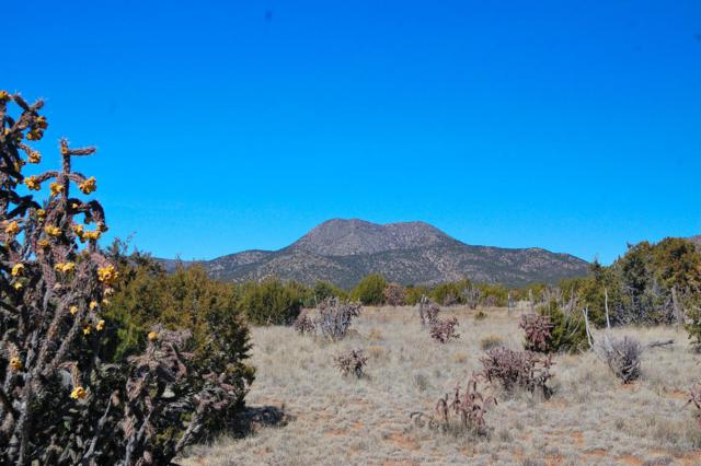 San Pedro Ranch, Edgewood, NM 87015 (MLS #886541) :: Campbell & Campbell Real Estate Services