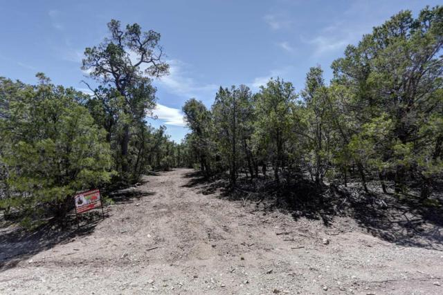9 Nez Perce Road, Edgewood, NM 87015 (MLS #888156) :: Campbell & Campbell Real Estate Services