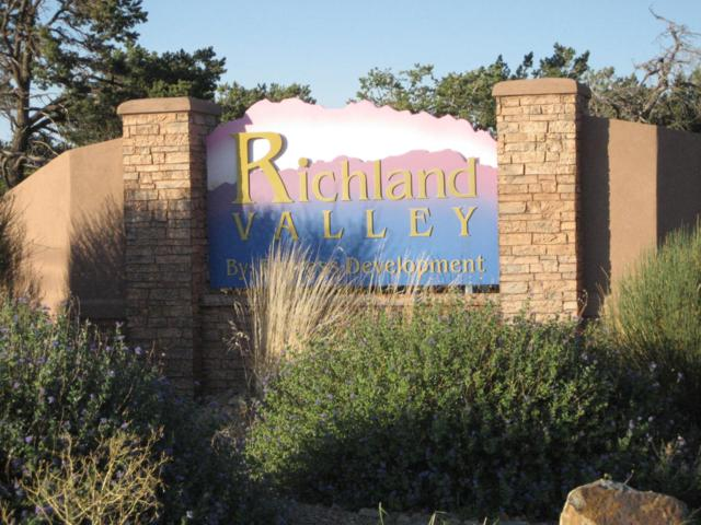 Richland Valley -Mt.Valley Rd, Edgewood, NM 87015 (MLS #888983) :: The Bigelow Team / Realty One of New Mexico
