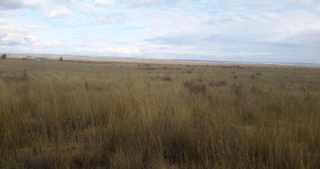 Belgian Road, Moriarty, NM 87035 (MLS #889554) :: Campbell & Campbell Real Estate Services